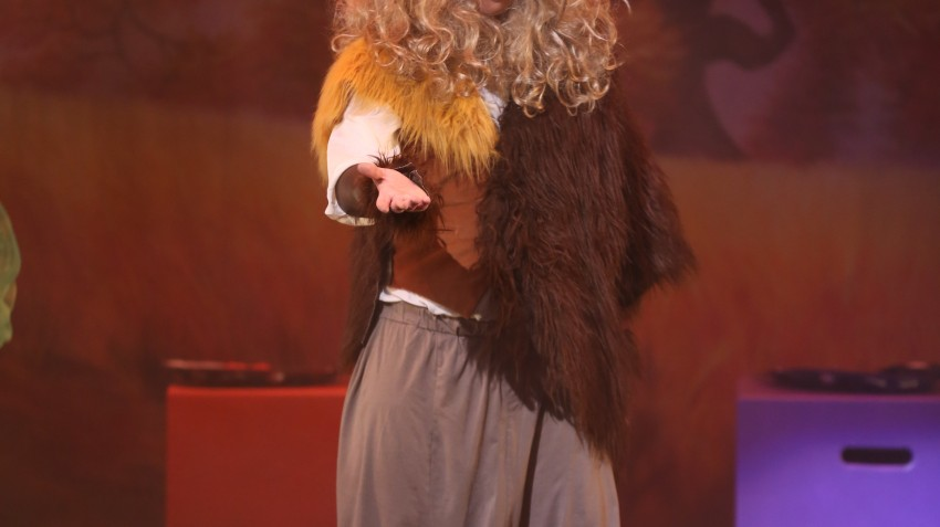 """Show Testimonials for """"The Lion, The Witch & The Wardrobe"""""""